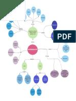 Mapa conceptual bioremediación