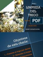 03. CHARLA 2 LIMPIEZA DE TRIGO HR final 2013 pdf.pdf