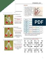 Estrabismo resumen.pdf