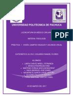 Practica_de_Vision_campos_visuales_y_agu (2).pdf