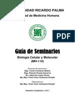 GUIA DE SEMINARIOS 2020-I
