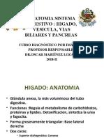 9. Anat-diges h.v.vb y p.