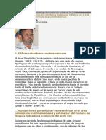 CONSTENLA ADOLFO. (2007). EFECTOS DE LA CONVIVENCIA DEL CASTELLANO Y LAS LENGUAS INDIGENAS