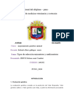 Tipos de selección unicarácter y multicarácter.docx