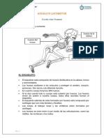 PRIMER GRADO-CIENCIA Y TECNOLOGÍA-(S8)
