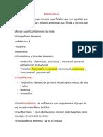 AntimicoticosPDF.pdf