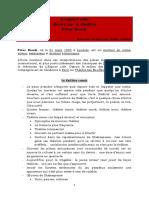 lespace vide de brook.pdf