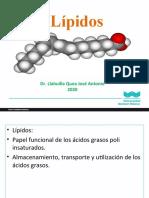 4_lipidos_2020_II