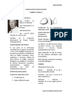 CLASIFICACIÓN DE ARTICULACIONES
