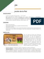 Dermatología - Clase 1