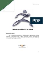 zibi_sarting.pdf