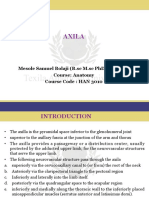 Axilla.pdf