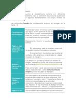 FUENTES RECLUTAMIENTO EXTERNO.docx