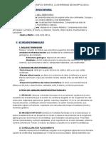 GEOGRAFÍA TEMA 1- Alicia Ochoa (1).pdf