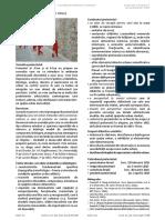 tema P3_2015.pdf