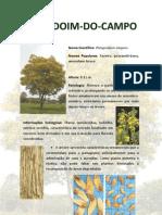 Amendoim Do Campo