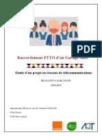 Rapport d'activité Erika Rjazanova 2019