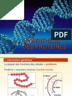 LA SYNTHÈSE DES PROTÉINES_2