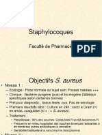 Staphylocoques