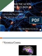 Comunicación intraneuronal.pptx