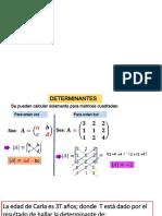 NASH4totema17Determinantes.pdf