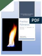 Practica 1 Polimeros