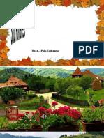 www.nicepps.ro_22943_Satul Romanesc.,,1