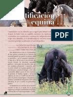 Dialnet-IdentificacionEquinaIII-5997839.pdf