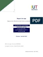 rzpport.pdf
