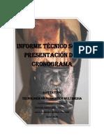 Informe técnico sobre presentación del cronograma