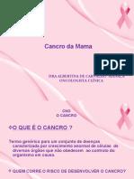 4. PALESTRA DA MAMA 2013