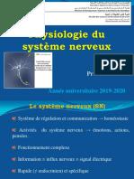 cours  système nerveux L2 (1)