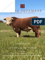 Tupambae Catalogo 2020