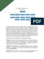 Estrutura Organizacional, Funções e Definições Da CMJ Com Cronograma
