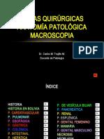 MACROSCOPIA(1)