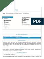 MUN, irregularidades licitación pública, adjudicación.pdf