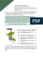 Importancia de la biodiversidad y los bionegocios