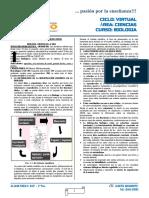 01_BIOLOGIA_CARACTERISTICAS DE LOS SERES VIVOS