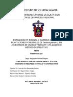 Estimacion de biomasa aerea Tectona grandis occidente de Mexico