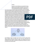 ISOMORFISMO YLA LEY DE PRAGNAZ.docx