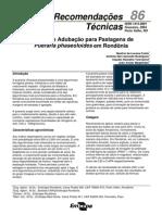 Calagem e Adubação de Pastagens de Pueraria phaseoloides