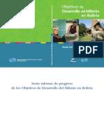 Sexto informe de progreso de los Objetivos de Desarrollo del Milenio en Bolivia