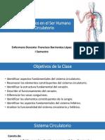3. Sistema Circulatorio