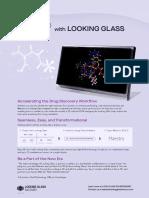 looking-glass-maestro-info-sheet