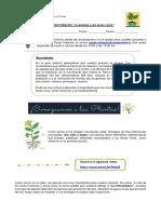 3º-BASICOS-CIENCIAS-NATURALES-GUIA-9-PAULA-CABEZAS