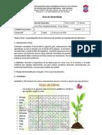 Cs_3EGB_U2_G02_Conociendo_las_plantas-1