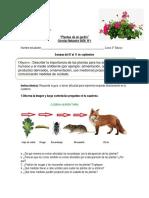 3°-Básico-Ciencias-Naturales-Guía-1-Plantas-de-mi-jardín.pdf