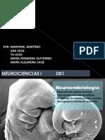 Neurociencias I