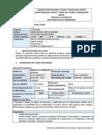 GUIA Didáctica 6 Psic Org 2020