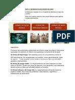DEBATE 16_MENA VIERA MARIELA(EXPOSICION LIMPIEZA Y DESINFECCION HOSPITALARIA